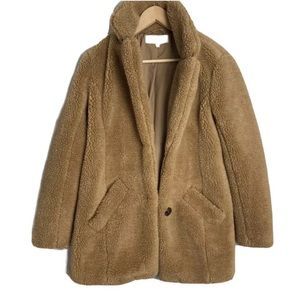 Sebby Teddy Bear Coat